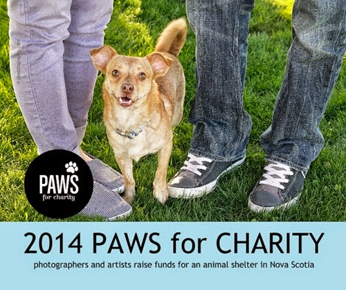 2014 Paws for Charity