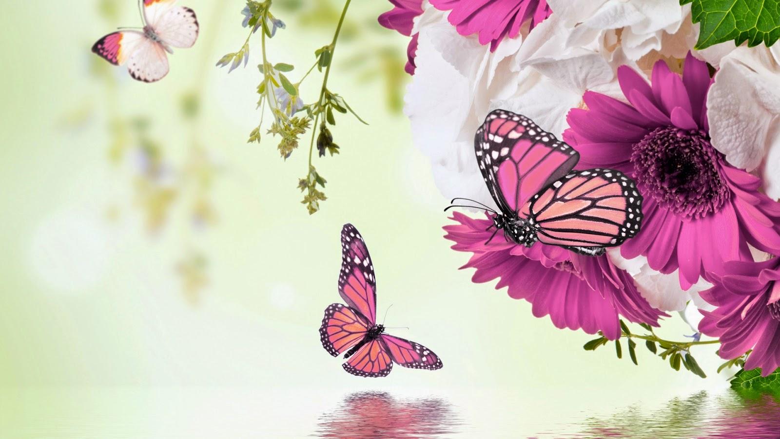 Mariposas y Flores Moradas de Colores