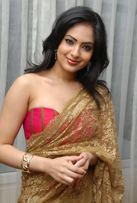Nikeesha-Patel-In-Saree-Blouse-Photos