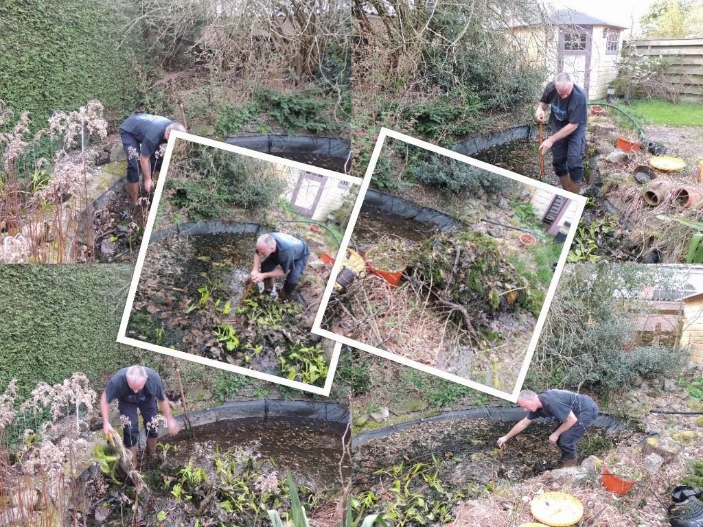 Foto's aanleg nieuwe tuin