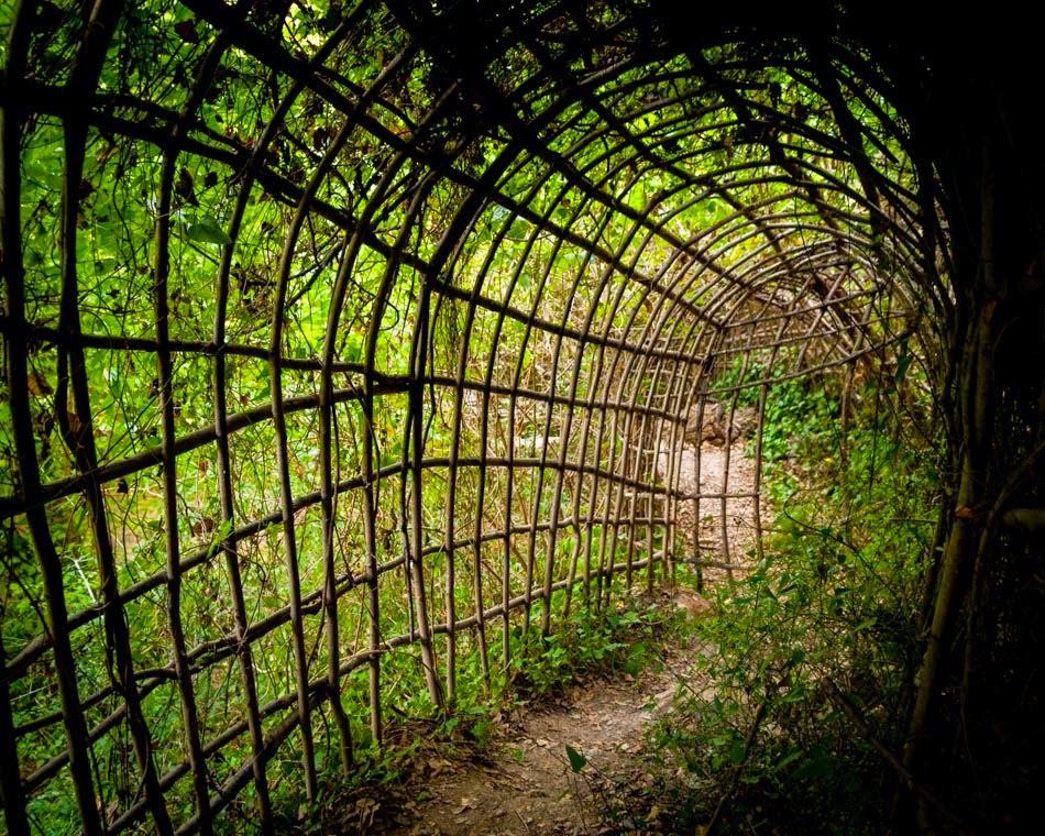 Josep-Pujiula-Labrynth-c-Alastair-Philip-Wiper-3-jardins vegetaux - art brut outsider