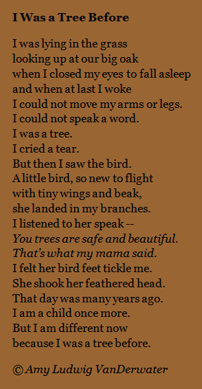the poem farm i was a tree before