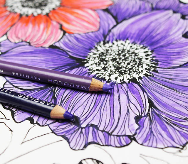 technique by covering the surface of your drawing with a light layer of baby oil and then shade over the top with your pencil for rich velvety color