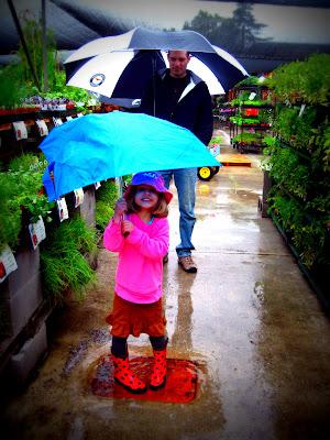 Garden inspiration on a rainy day