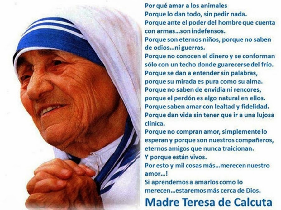 Arls Bento Gonçalves 2450 Frases De Madre Teresa De Calcutá