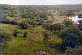 Madhav National Park, Madhya Pradesh