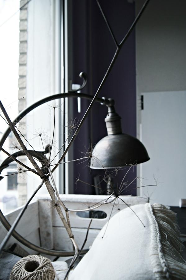diy 12tel blick projekt fotostudio und terrassengarten. Black Bedroom Furniture Sets. Home Design Ideas