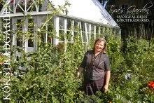 Välkommen till Tyras Trädgård - Mångfaldens köksträdgård