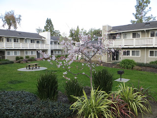 Biltmore Apartments Cupertino