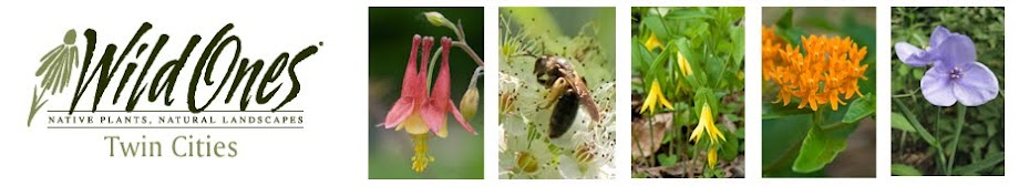 Wild Ones Twin Cities Minnesota