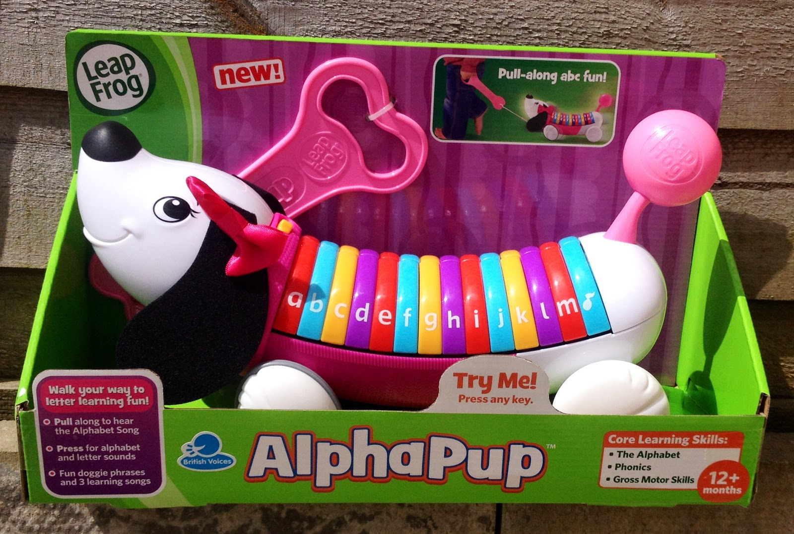 Leapfrog Alphapup review