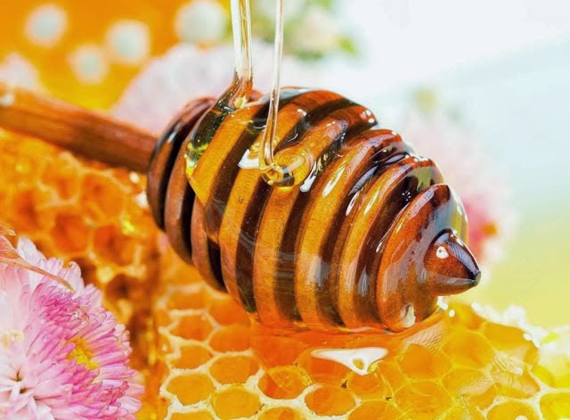 bao quan mat ong trong chai nhua hay chai thuy tinh tot hon