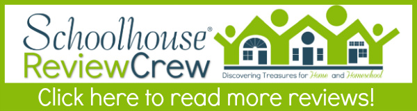 http://schoolhousereviewcrew.com/micro-business-for-teens-review/
