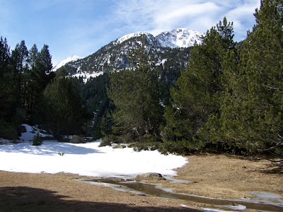 Landscape in Aigüestortes National Park