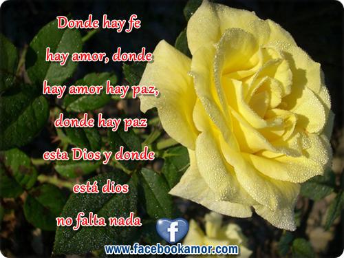 rosa amarilla con pensamiento de amor para facebook