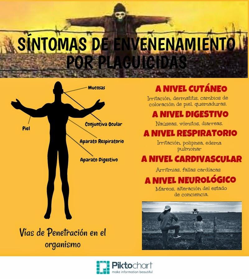 Plaguicidas_infografías