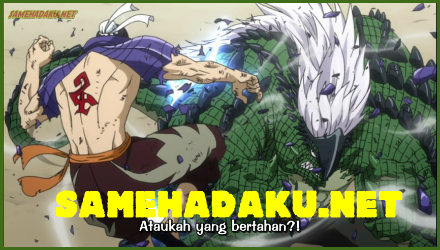 fairy+tail+162+subtitle+indonesia-sameha