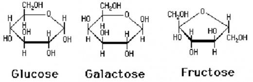 mono saccharides