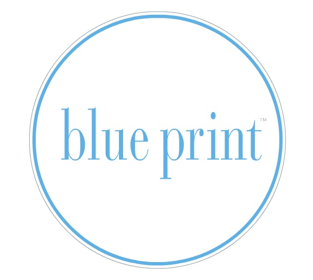 Blueprint for design dallas from the looks of thingsthey have designed a blueprint for success malvernweather Images