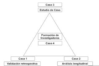 Ejemplo de triangulación en base a caso - Christian A. Estay-Niculcar (c)