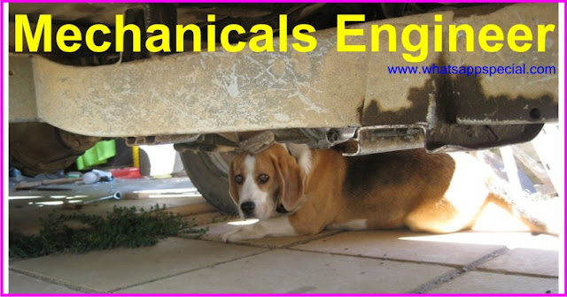 Mechanicals Engineer dog, under the car