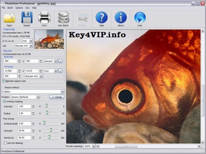 PhotoZoom Professional 5.1.2 Full Key,Phần mềm giúp phóng to ảnh nhưng không vỡ hạt hay giảm chất lượng