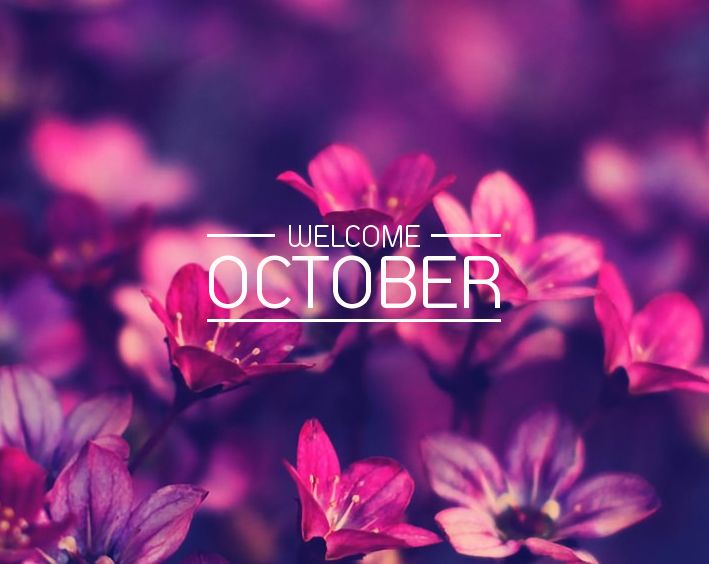 Pictures BBM Welcome October Quotes 2017 - Kochie Frog