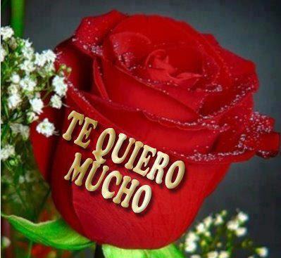 Te Quiero Mucho, Feliz Dia de San Valentin