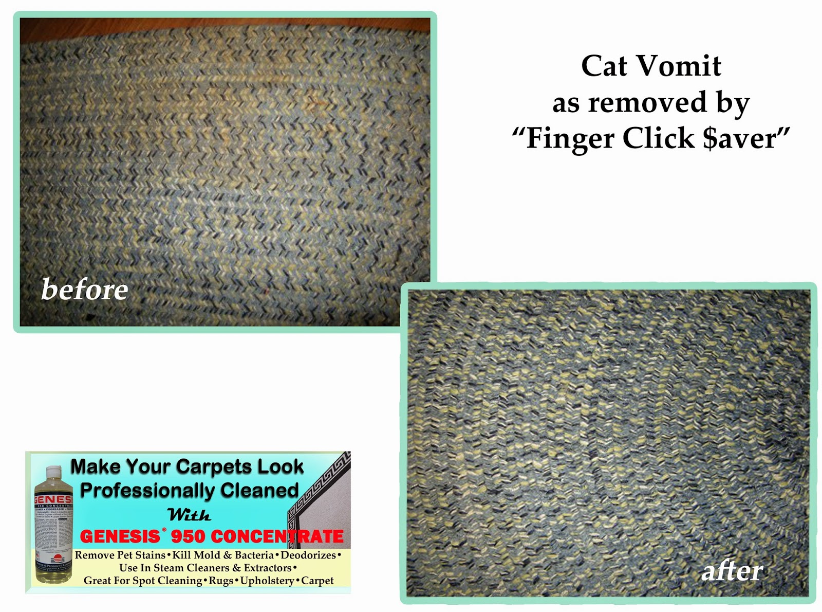 Remove Pet Vomit Stains From Carpet