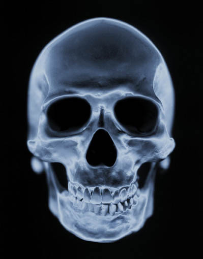 Skull And Crossbones Bbm Symbol Osborndaviess Blog