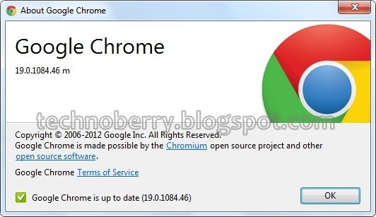 Download Google Chrome 19 Stable Offline Installer