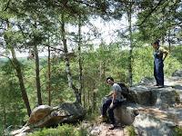 ランブイエの森
