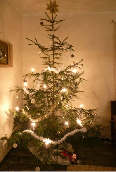 Joulupuu on rakennettu...