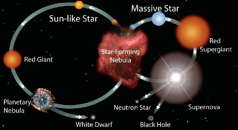 red dwarf star cycle - photo #5