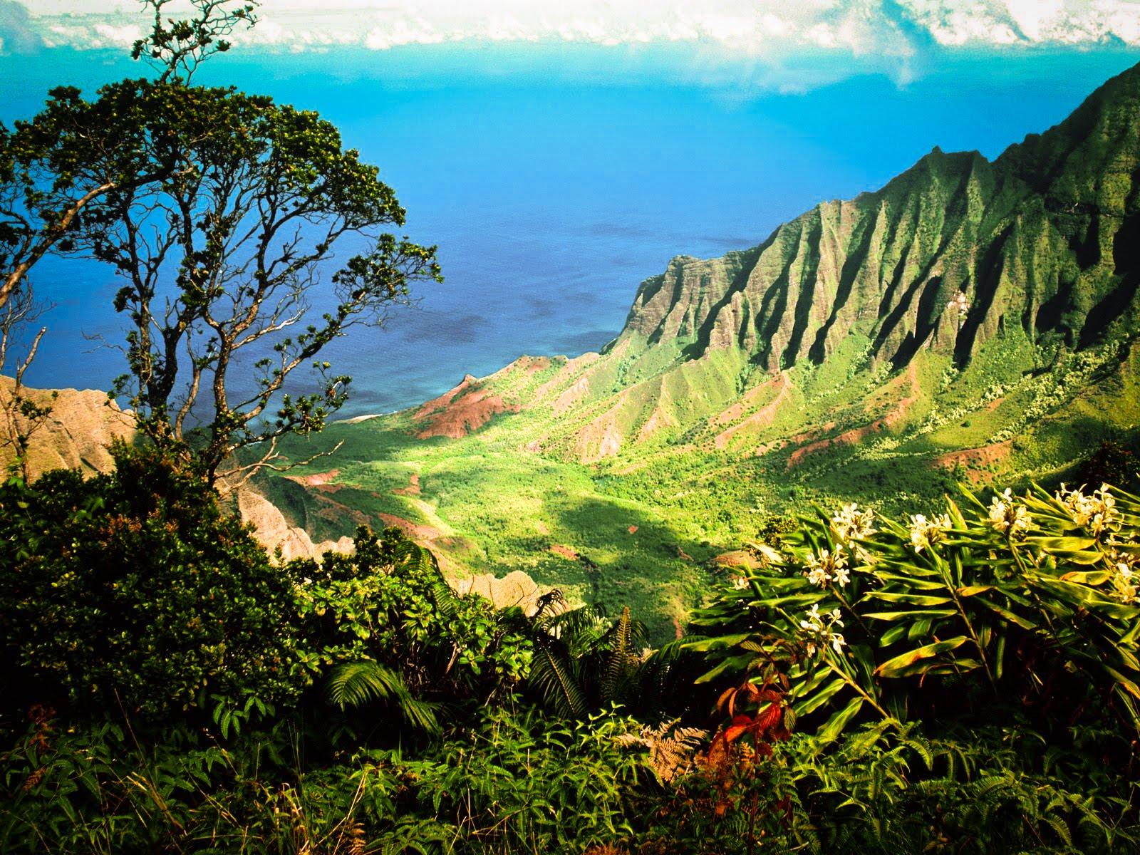 http://4.bp.blogspot.com/-bT8-pGwL9Ho/TrmB163hV_I/AAAAAAAACeU/TaA_Y8tg-As/s1600/Hawaii%252BWallpaper-2.jpg
