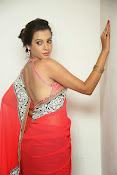 Deeksha panth latest glam pics-thumbnail-19