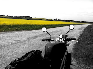 beautiful yellow canola fields viewed from the motorcycle