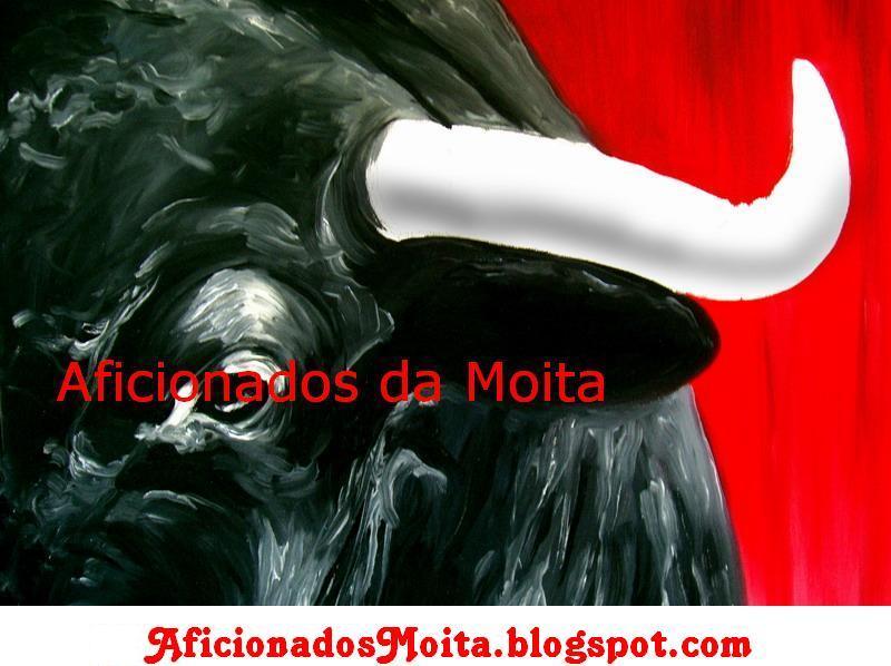 BLOG/SITE AFICIONADOS DA MOITA: