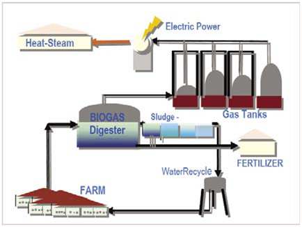 biogas power plant thesis Comparative study of biogas production from cow dung,  a 45 litres capacity metallic prototype biogas plant constructed at the.
