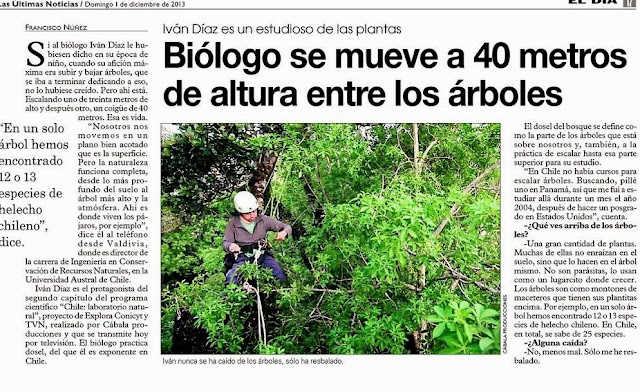 Laboratorio de biodiversidad y ecolog a del dosel difusi n for Noticias naturaleza