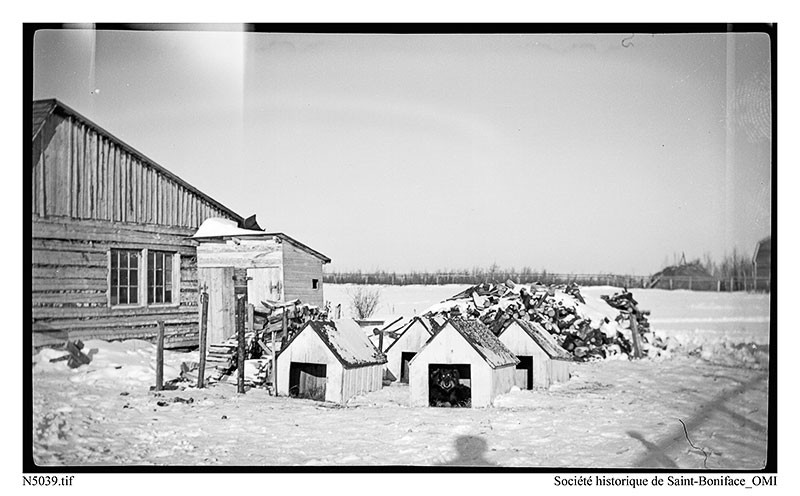 Saskatchewan father mathieu 39 s dog team 1950 39 s la loche for Ice trek fish house