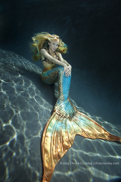 the gallery for gt mermaids tail tumblr