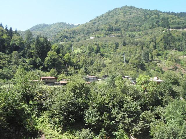 macahel-camili