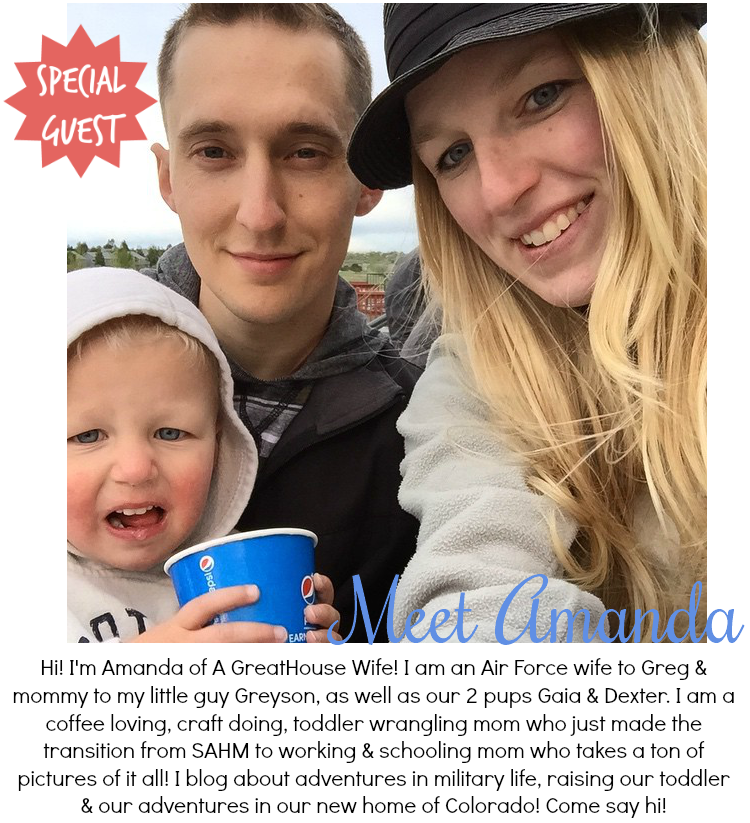[Guest Post] Getting to Know Amanda from A GreatHouse Wife