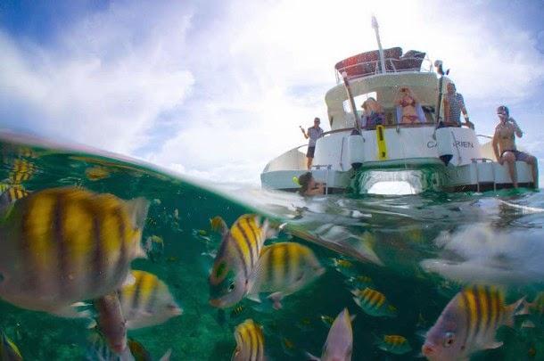 http://www.coupsdecoeurpourlemonde.com/2014/10/poissons-tropicaux-et-plage-deserte-a-cayo-ensenachos/