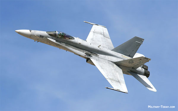 F/A-18 Hornet All-weather Fighter