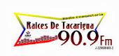 Raices de Tacarigua