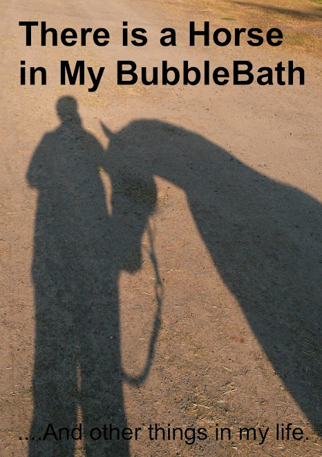 There is a Horse In My Bubblebath