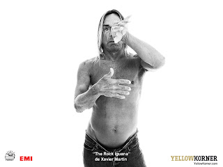 Iggy Pop wallpaper