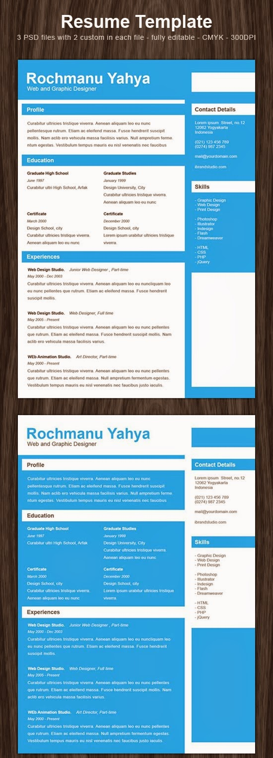 free clean one page resume